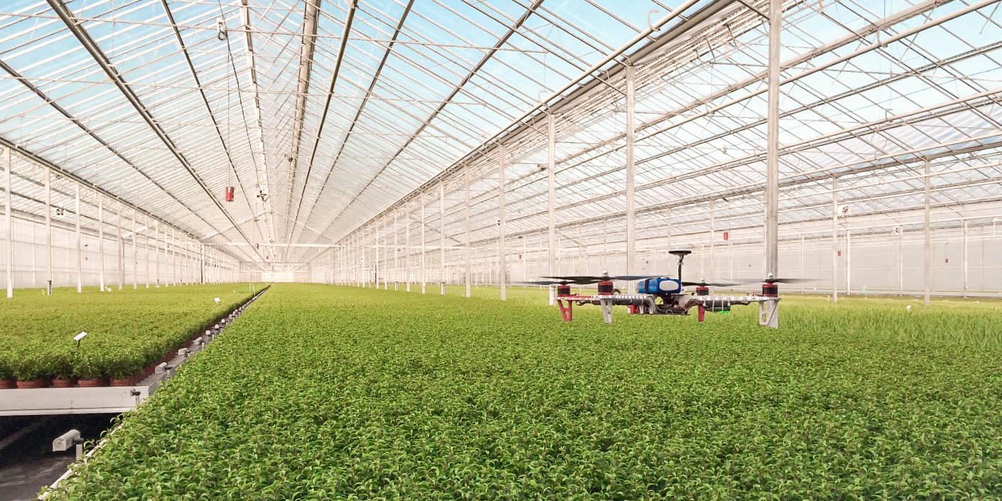 So nutzt die Niederlande das Precision Farming für den Blumenanbau
